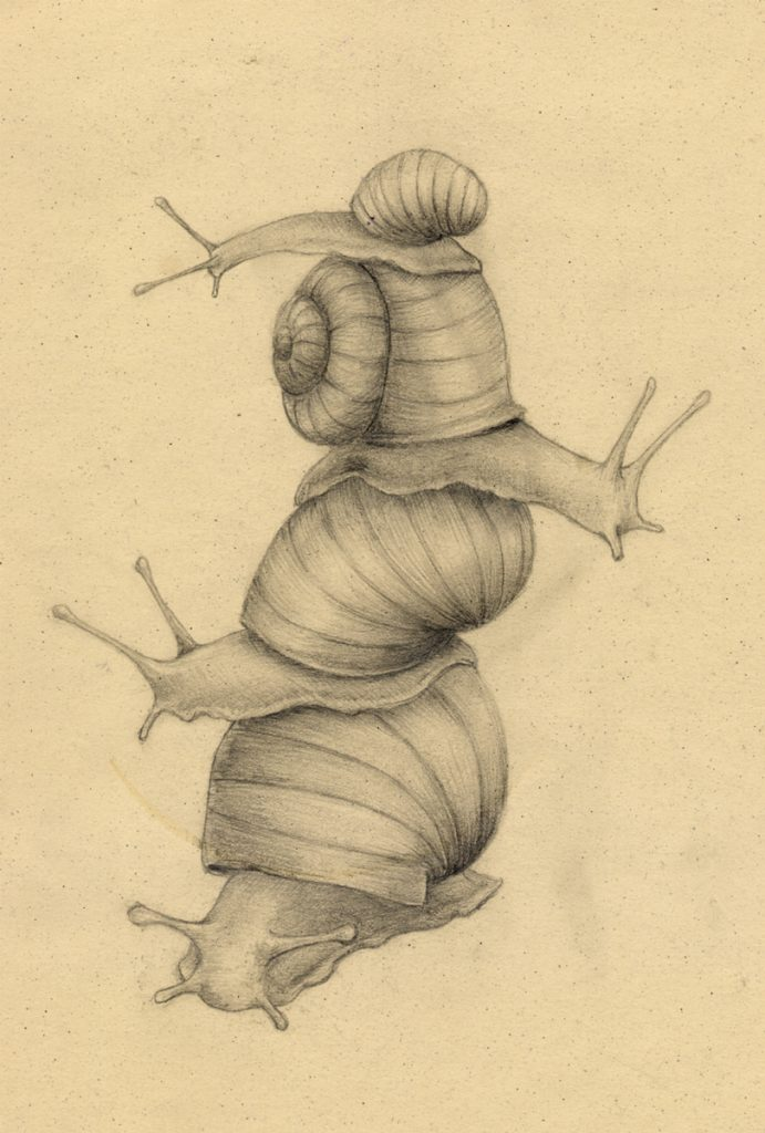 Snail tower